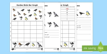 Bar Graphs with Birds Differentiated Activity Sheet - bar graphs, birds, graph, maths, mathematics, activity, differentiated