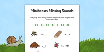 Minibeast Missing Sounds Worksheet - minibeasts, phases