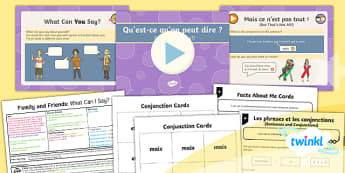 PlanIt - Year 5 French - Family and Friends Lesson 6: What Can I Say? Lesson Pack - french, languages, grammar, animals, family, describing, noun, adjective, sentence,French