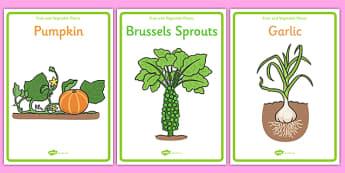Fruit and Vegetable Plants Display Posters - fruit and vegetable plants display posters, fruit and vegetable, fruit, vegetable, display, poster, sign, plants, apple, banana, pear, tomato, potatoe, carrot