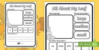 All About My Leaf Activity Sheet Leaves, worksheet