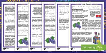 Comprensión lectora de atención a la diversidad: Como celebramos Año Nuevo 4º y 5º de EP - Año Nuevo, fin de año, propositios, leer, lectura, diversidad, niveles,Spanish
