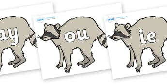 Phase 5 Phonemes on Racoons - Phonemes, phoneme, Phase 5, Phase five, Foundation, Literacy, Letters and Sounds, DfES, display