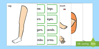 Body Part Counting Cut-Out Activity - ourselves, myself, body parts, human body