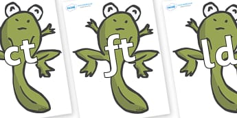 Final Letter Blends on Froglets - Final Letters, final letter, letter blend, letter blends, consonant, consonants, digraph, trigraph, literacy, alphabet, letters, foundation stage literacy