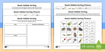KS1 Beach Habitat Sorting Differentiated Activity Sheets - Seaside, Animals, Plants, Birds, Coast, Where, Live, Home, worksheets