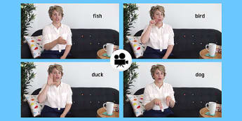 British Sign Language: Baby Sign Animal Signs Video Clip - british sign language, baby signs, video clip, animal signs
