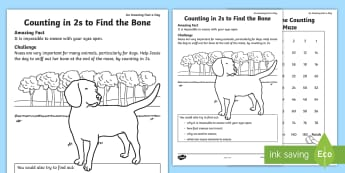 Counting in 2s to Find the Bone Activity Sheet - Amazing Fact Of The Day, activity sheets, powerpoint, starter, morning activity, May, count in 2s. c