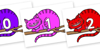 Numbers 0-50 on Cheshire Cats - 0-50, foundation stage numeracy, Number recognition, Number flashcards, counting, number frieze, Display numbers, number posters