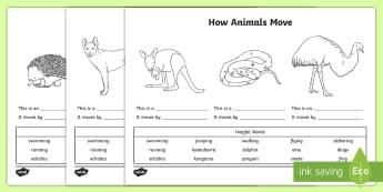 How Animals Move Activity Sheet - Australian Curriculum, biological sciences, animal movement, how animals move, Australian animals, p