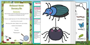 Minibeast Match Sensory Bin - Minibeast, creepy crawlies, EYFS, worm, butterfly, spider, caterpillar, beetle