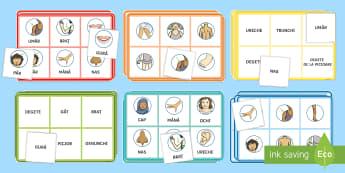 Corpul omenesc Bingo - corpul omenesc, stiințe, lumea vie, animale, simțurile, activități,Romanian