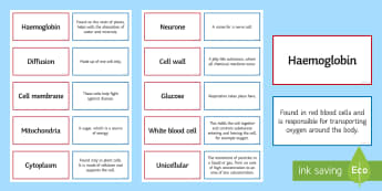 Cells Pairs Glossary Activity - Glossary, haemoglobin, cell, mitochondria, unicellular, neurone, cytoplasm, cell wall, glucose