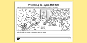 Protecting Backyard Habitats Colouring Activity - australia, Science, Year 1, Backyard, Habitats, Australian Curriculum, Living, Living Adventure, Environment, Living Things, Animals, Plants, Worksheet