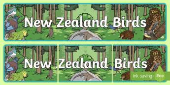 New Zealand Birds Banner - Aotearoa, native birds, extinct, Year 1-3, birds, fact file, banner