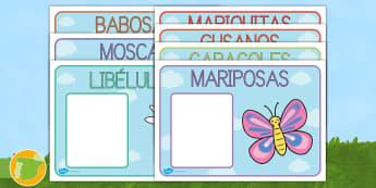 Carteles de mesa editables: Los nombres de la clase - Bichos - libélula, abeja, caracol, hormiga, típula, escarabajo, mariposa, oruga, gusano, mariquita, cochini