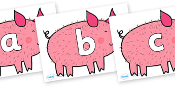 Phoneme Set on Hairy Hog to Support Teaching on What the Ladybird Heard - Phoneme set, phonemes, phoneme, Letters and Sounds, DfES, display, Phase 1, Phase 2, Phase 3, Phase 5, Foundation, Literacy
