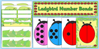 Ready Made Ladybird Number Bonds to Ten Activity and Display Pack (Minibeasts)
