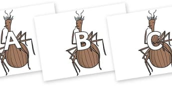 A-Z Alphabet on Miss Spider to Support Teaching on James and the Giant Peach - A-Z, A4, display, Alphabet frieze, Display letters, Letter posters, A-Z letters, Alphabet flashcards