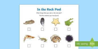 In a Rock Pool Checklist Activity Sheet - sea, seaside, sea creatures, beach, holiday, worksheet, scavenger, hunt,