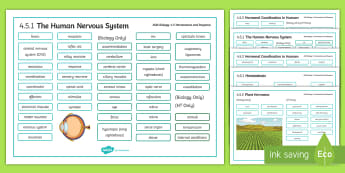 AQA Biology 4.5 Homeostasis and Response Word Mat - Word Mat, biology, gcse, aqa, homeostasis, response, stimuli, temperature, blood sugar, blood glucos