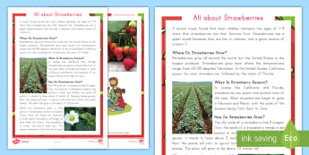 All about Strawberries Differentiated Fact File  - strawberry, plants, farming, picking, life cycle, STEM, science