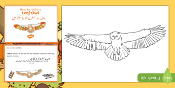 Leaf Owl Craft Instructions Urdu Translation - urdu, Autumn, seasons, september, october, topics, ks1, harvest, hibernation, reception, EYFS, owl, animal, forest, craft, leaves, leaf