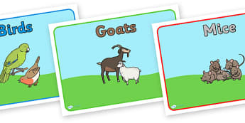 Editable Class Group Signs (Animals) - Animals, group signs, group labels, group table signs, table sign, teaching groups, class group, class groups, table label
