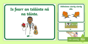 ROI Illustrated Seanfhocail Display Posters-Irish - ROI - Irish Language Week Gaeilge Resources - 1st-17th March, seanfhocail, gaeilge,Irish