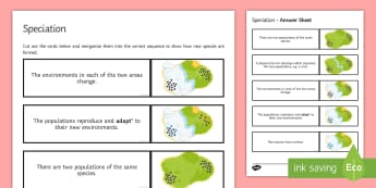 Speciation Sequencing Cards - Sequencing Cards, gcse, biology, species, variation, evolution, adaptation, adapt, evolve, speciatio