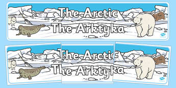 Arctic Display Banner Polish Translation - polish, arctic, display banner, display, banner, polar regions, polar