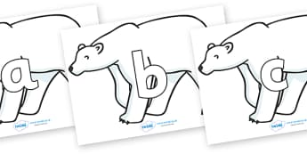 Phoneme Set on Polar Bears - Phoneme set, phonemes, phoneme, Letters and Sounds, DfES, display, Phase 1, Phase 2, Phase 3, Phase 5, Foundation, Literacy