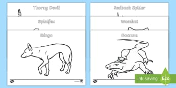 Australian Animals Colouring Pages - Australian Curriculum Biological sciences, Australian animals, koala, kangaroo, echidna, Australian