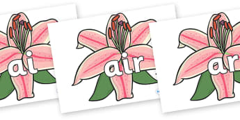 Phase 3 Phonemes on Lilies - Phonemes, phoneme, Phase 3, Phase three, Foundation, Literacy, Letters and Sounds, DfES, display