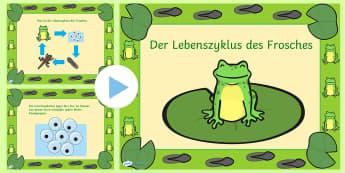 Der Lebenszyklus des Frosches PowerPoint - Frühling, Frosch, Lebenszyklus, Kaulquappe, Froschlaich, spring, frog, life cycle, tadpoles,German