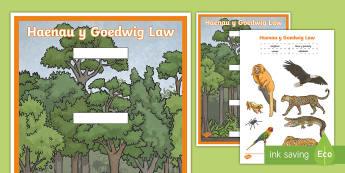 Taflen Weithgaredd Torri a Gludo Haenau Y Goedwig Law  - rainforest, coedwig, glaw, haenau, layers, torri, gludo, gweithgaredd,Welsh