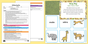 EYFS Safari Pattern Match Busy Bag Plan and Resource Pack - Safari, match, matching, pairs, game, animals, patterns, spots, stripes, repeating pattern