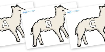 A-Z Alphabet on Lambs - A-Z, A4, display, Alphabet frieze, Display letters, Letter posters, A-Z letters, Alphabet flashcards