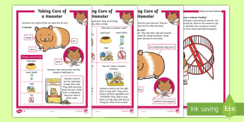 How to Take Care of a Hamster Differentiated Fact File - Pets, pet, EYFS, KS1, take, care, look, after, family, member, members, vet, vet surgery, surgery, i