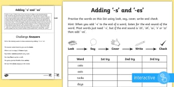 Year 1 Spelling Practice Adding Suffixes '-s' and '-es' Go Respond Activity Sheet - ks1, English, year 1, practice, home learning, home work, homework, Worksheet, practise, SPaG, spell