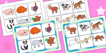Matching Mat SEN to Support Teaching on Farmyard Hullabaloo - farm, matching mat, SEN