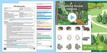 EYFS Woodland Animal Habitats Adult Input Plan and Resource Pack - EYFS Owlets, Owl Babies, Martin Waddell, owl, nature, british, wildlife, nocturnal, night, animals,
