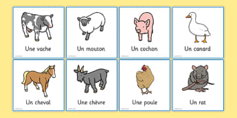 French Animal Snap Cards - CfE, Modern Languages, French, Games
