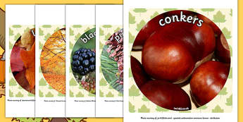 Autumn Display Photo Cut Outs - seasons, weather, cutout, display