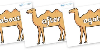 KS1 Keywords on Camels - KS1, CLL, Communication language and literacy, Display, Key words, high frequency words, foundation stage literacy, DfES Letters and Sounds, Letters and Sounds, spelling