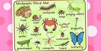 Minibeasts Word Mat - word mat, keywords, keyword mat, visual aid