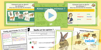 PlanIt - Year 5 French - Family and Friends Lesson Pack - french, languages, grammar, animals, description, noun, adjective, agreement, gender,French