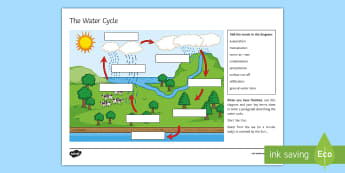 The Water Cycle Activity Sheet - Secondary - Geography - Water Cycle