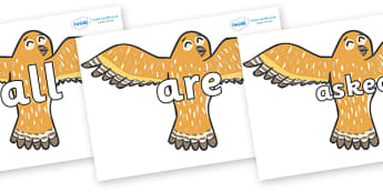 Tricky Words on Owls - Tricky words, DfES Letters and Sounds, Letters and sounds, display, words