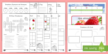 All About Strawberries K-2 Resource Pack - plant, fruit, farm, field trip, farming, picking, life cycle, STEM, science